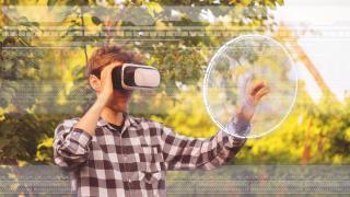 Virtuelle Bäume: mit Digitalisierung zu hübscheren Gärten