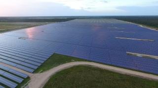 Solarpanele auf grüner Wiese