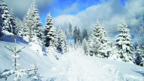 Winterfest: Tipps gegen den Kältetod bei Smartphones und Co.