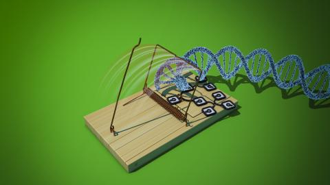 Datensammler entdecken die DNA ihrer Kunden als Kapital