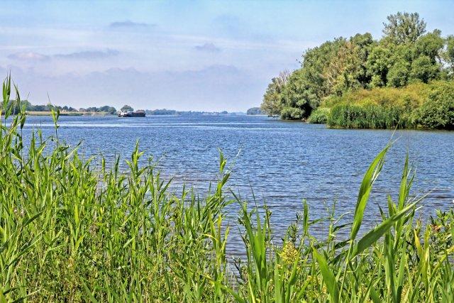 Elbe blau von Reiner von der Schlei