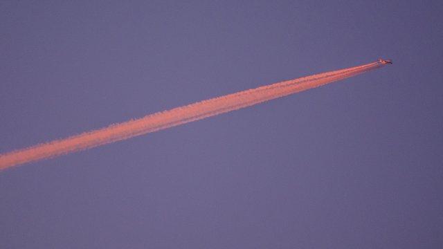 323/365 - Sonniger Flug von micha0001a