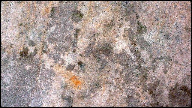 abstract 1831 von Fabio Keiner