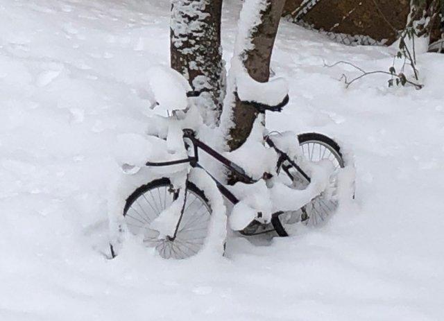 Snowy Bike von Claus Kränzle