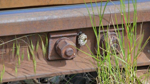 Bahn affin von Hermi1
