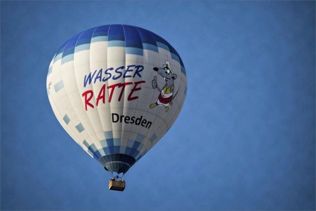 Wasserratte Dresden von FMW51