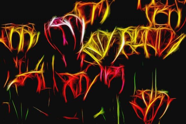 Tulpenfeld von Addi Beck