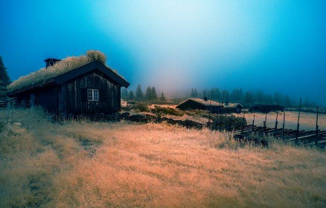 Nebelmorgen von Ralph Altmann