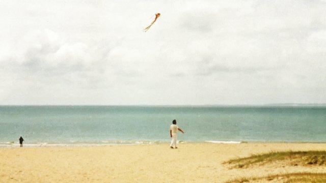 Strandläufer von Joachim Kiner