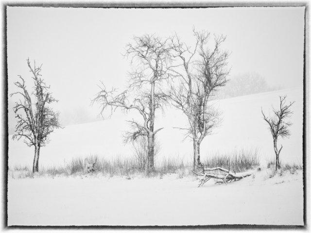 Wintereinbruch von Gerhard1953
