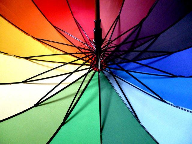 Regenbogenfarben von Strandläuferin