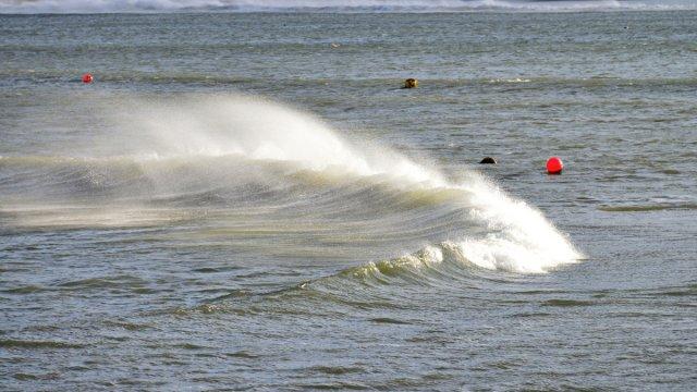 Welle von Hermi1
