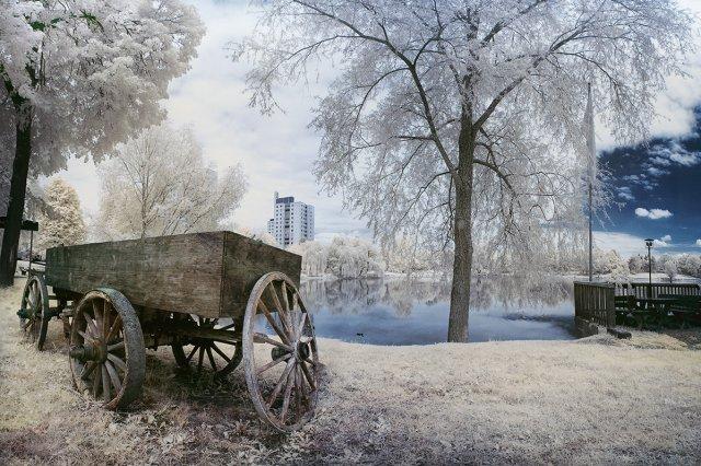 The Car.jpg von fotofame