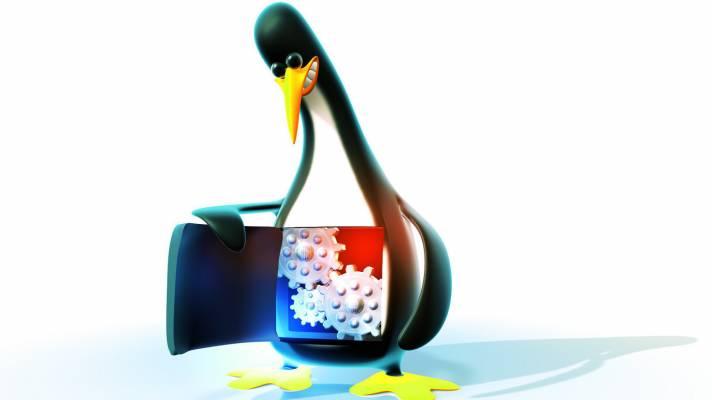 Linux-Kernel maßgeschneidert