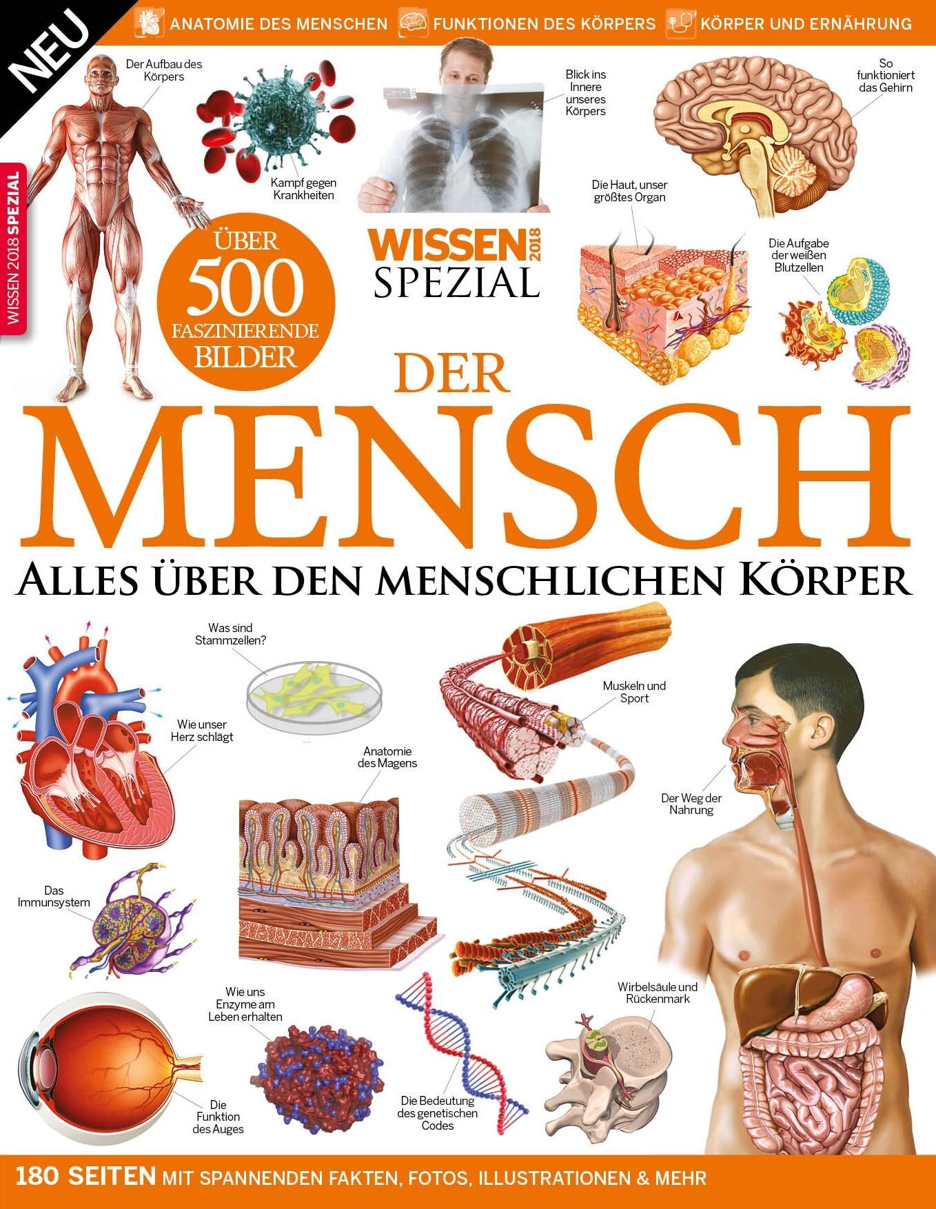 Wissen Sonderheft Der menschliche Körper 2018