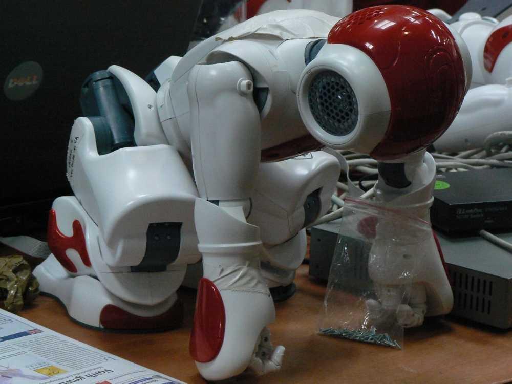 Der neue Standardroboter Nao