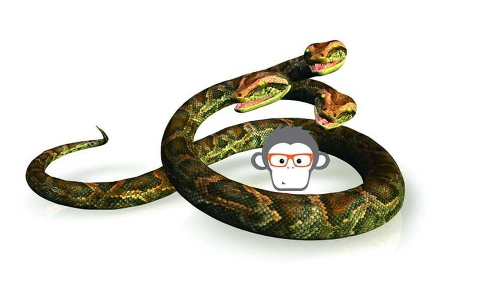 Anaconda-Report: Gute Zukunftsaussichten für Python und R