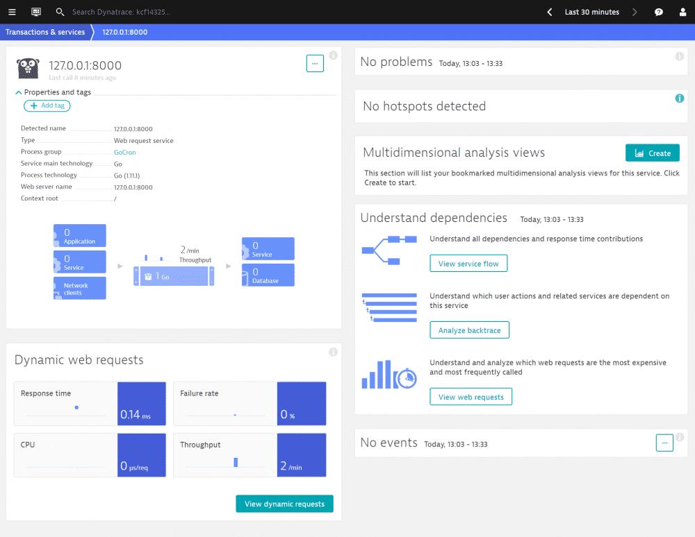 Dynatrace erkennt GoCron als Go-Prozess und startet das Monitoring automatisch.