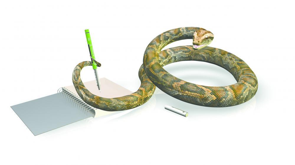 Python-Umzug nach GitHub soll bis Ende 2016 abgeschlossen sein ...