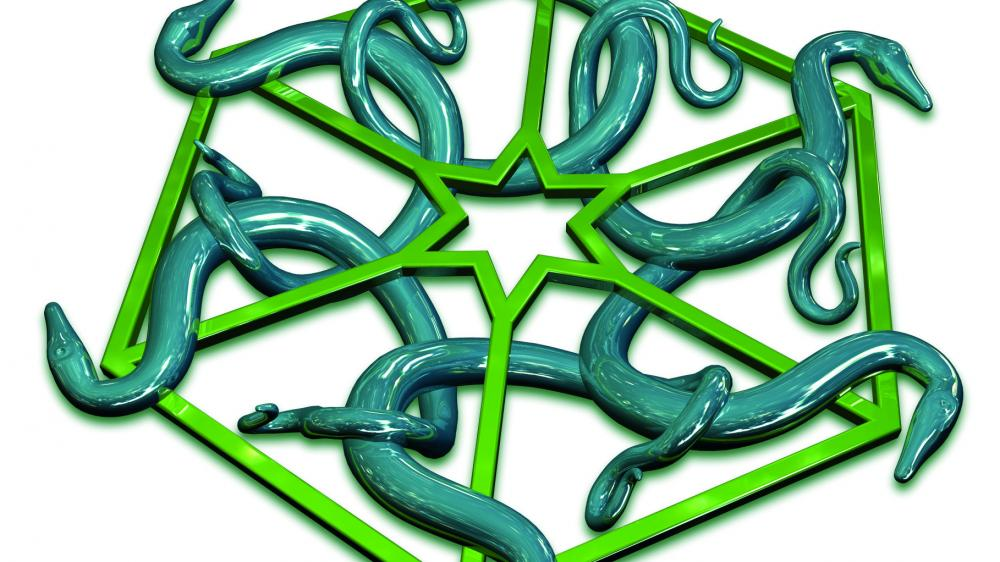 Python ist dritte von GitHubs Security-Scanner unterstützte Programmiersprache