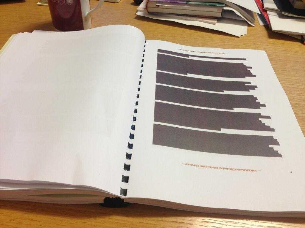 Mit solchen Dokumenten sollen Parlamentarier die Affäre aufklären.