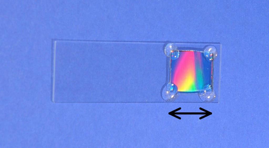 Ein Objektträger für Mikroskope mit einem bunt glänzenden Stück aus einer CD.