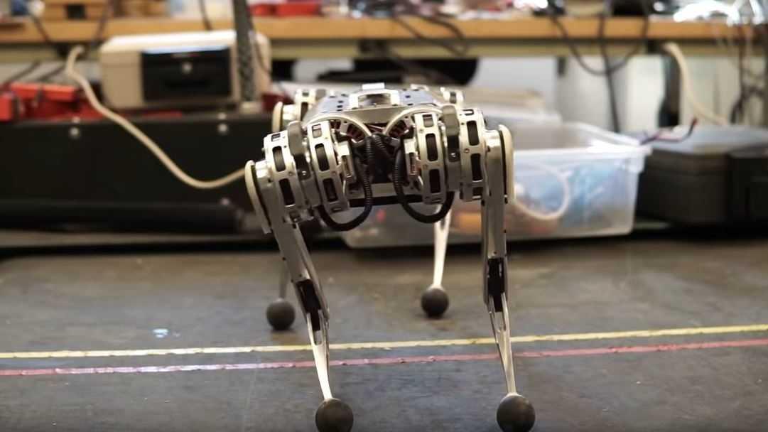 Vierbeiniger Roboter Cheetah macht Salto aus dem Stand