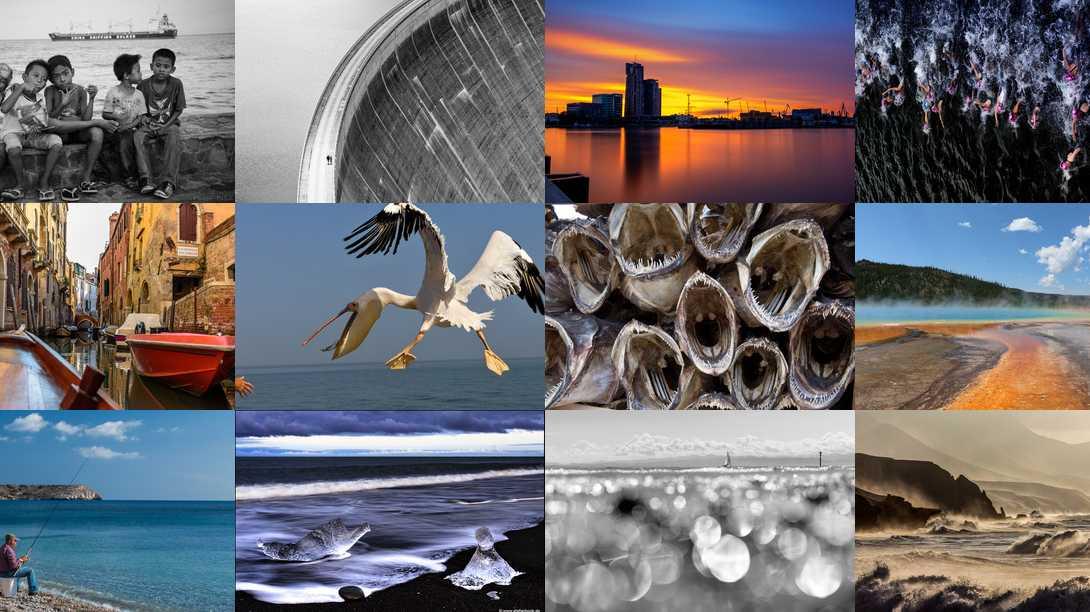 """Wettbewerb """"Leben am Wasser"""": Fotos bewerten"""
