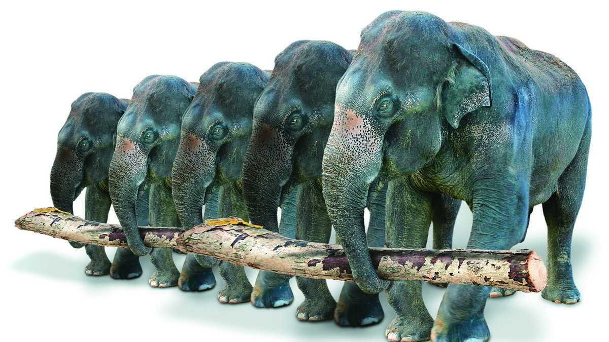 Big Data: Hortonworks Data Platform 2.6 soll deutlich schnellere Abfragen liefern