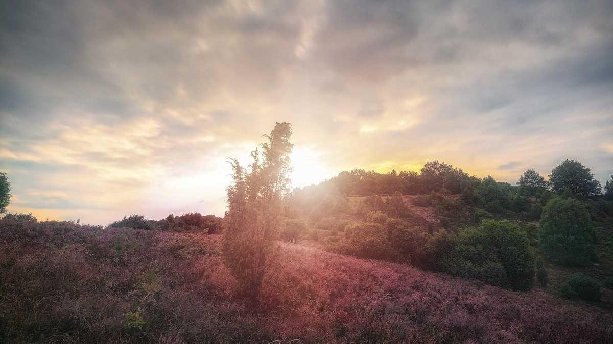Der Blick zum Himmel: Die Bilder der Woche (KW 39)