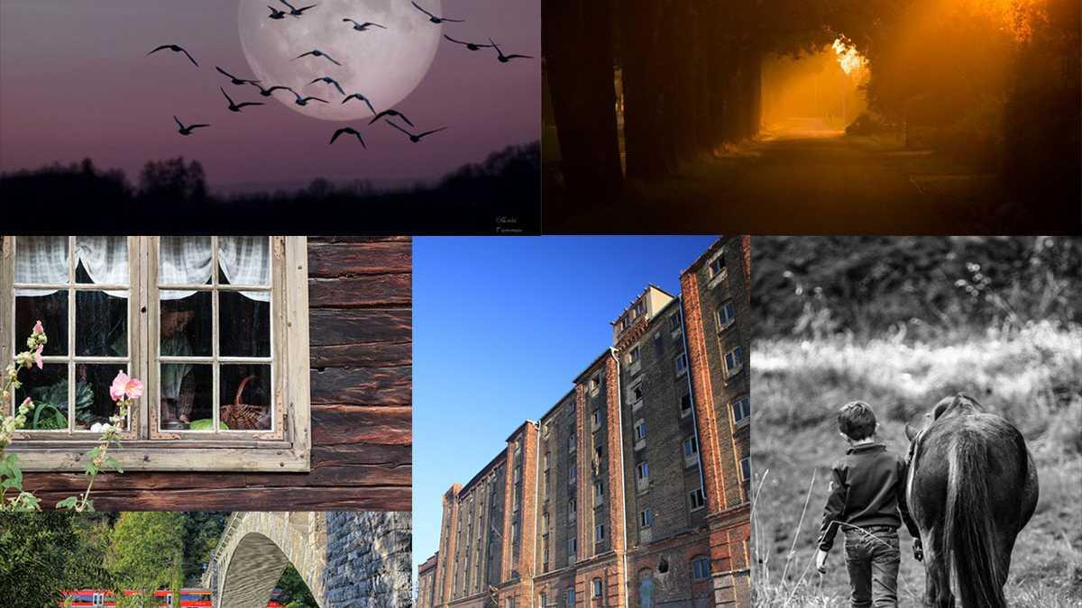 """Fotowettbewerb """"Coming home - Heimkommen"""" bewerten"""
