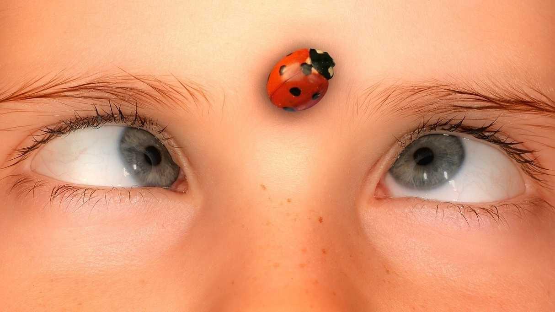 Kind schielt auf einen auf der Stirn sitzenden Marienkäfer