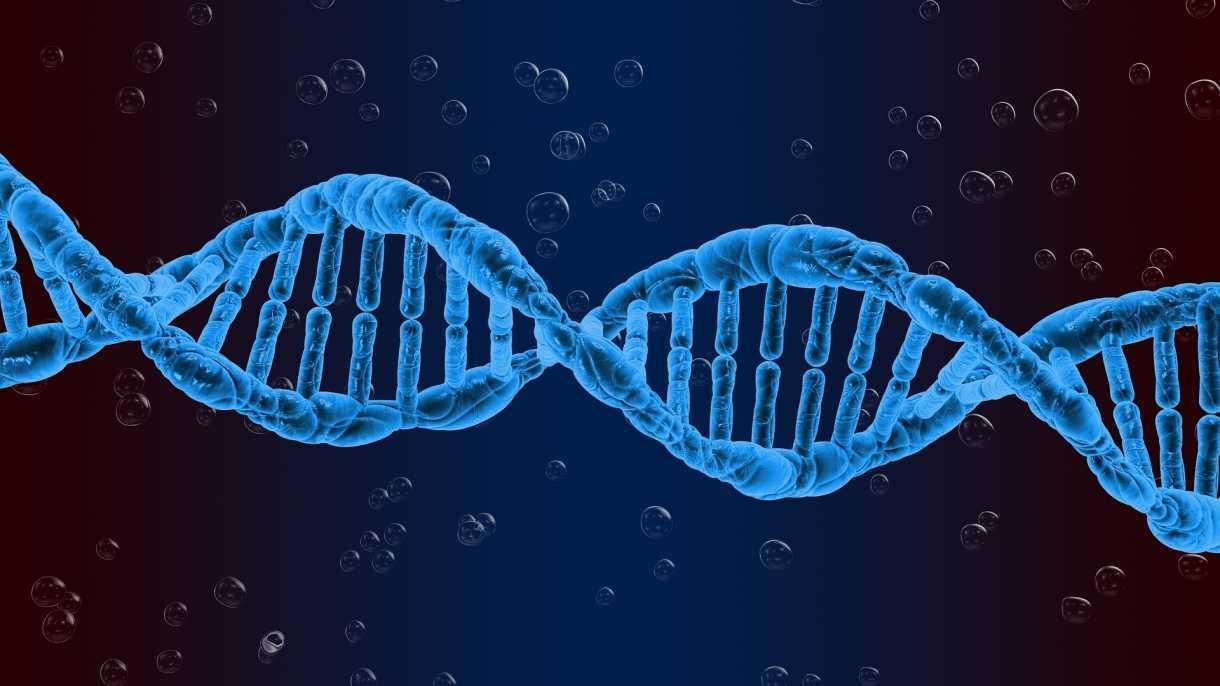 35 Prozent Engländer: Millionen Menschen betreiben DNA-Ahnenforschung