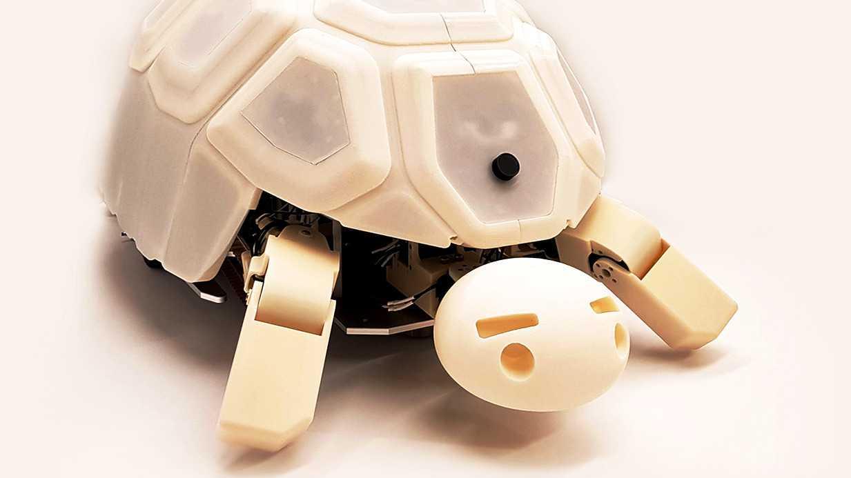 Roboterschildkröte Shelly