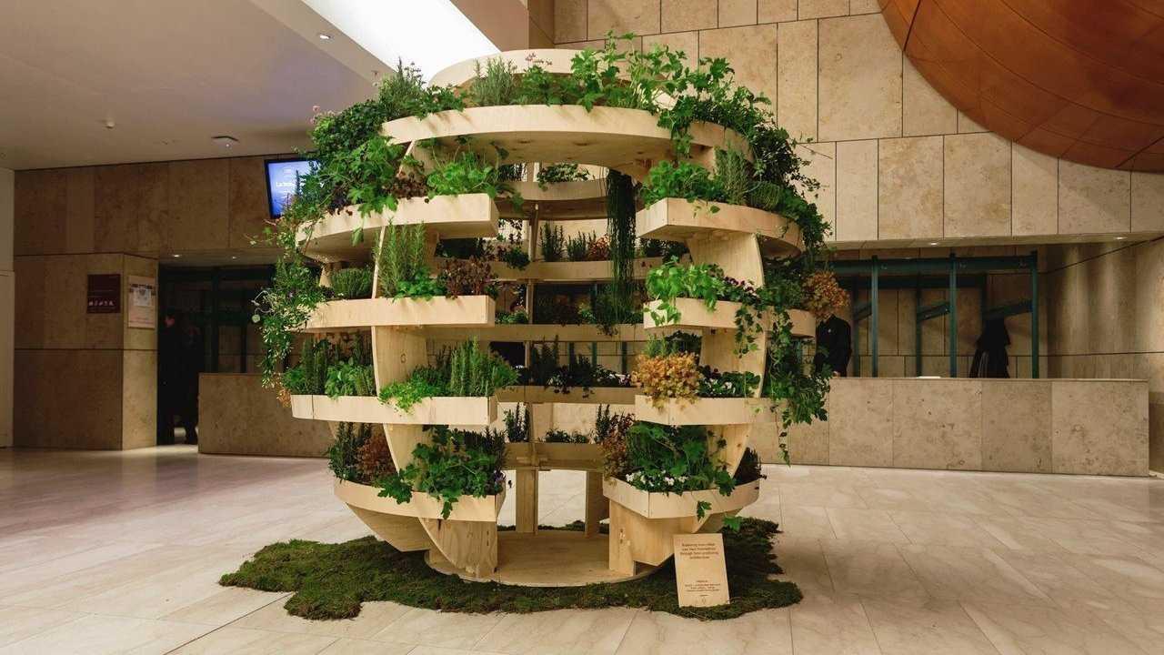 Holzgestell mit Pflanzen