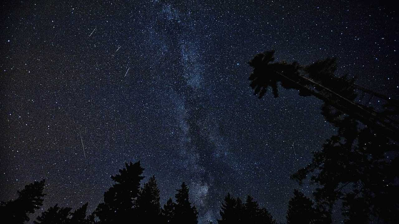 Sternschnuppenstrom erreicht Maximum - Sicht im Süden am besten