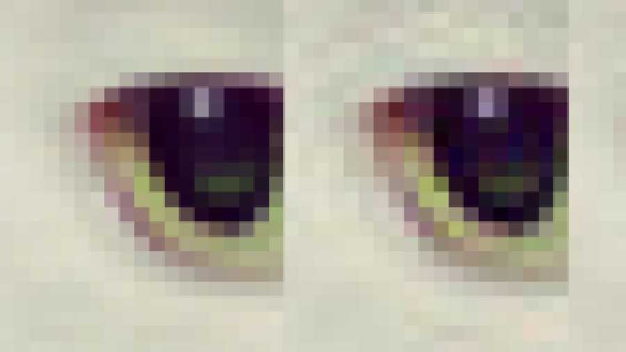 Googles Guetzli-Encoder schrumpft JPEG-Bilder