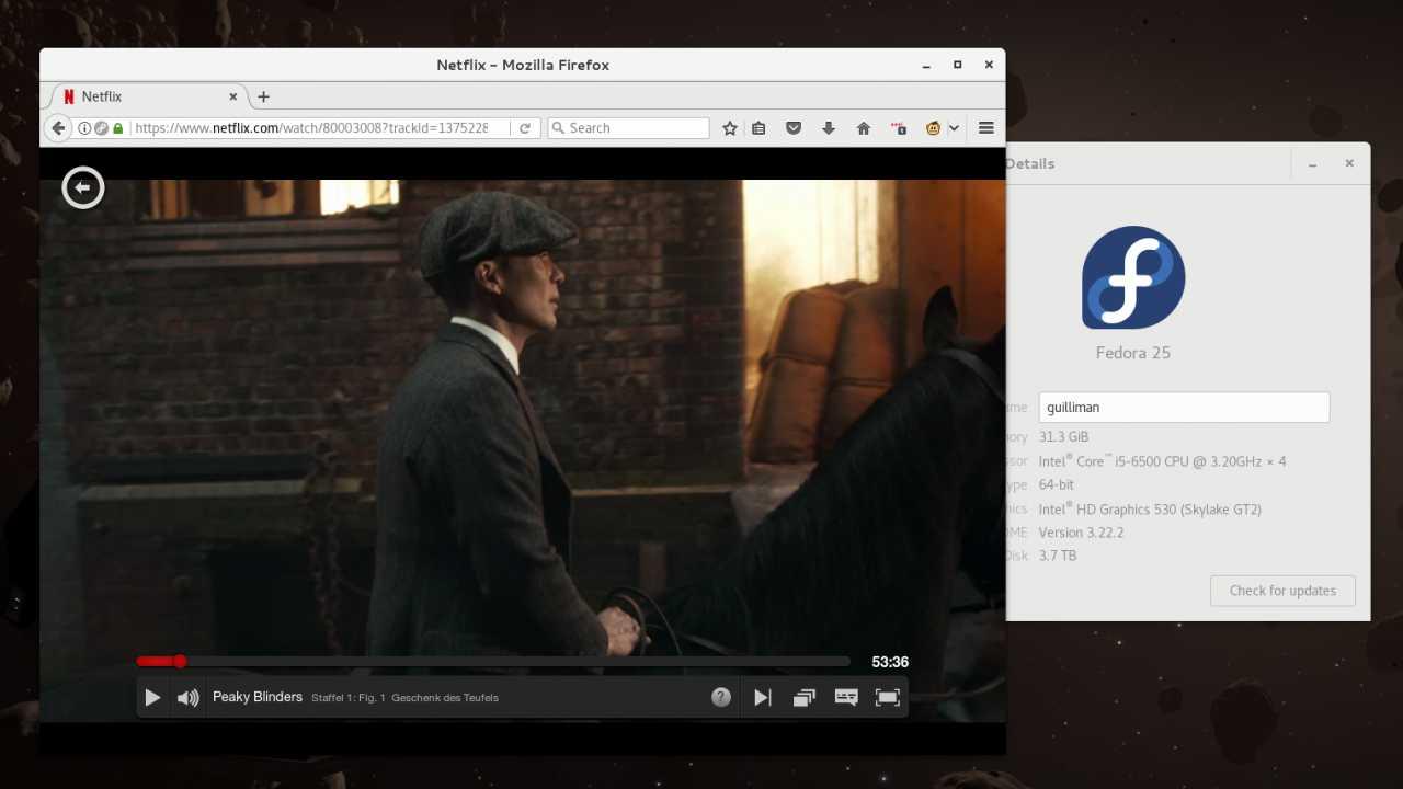 Serienspaß auch für Linux-Nerds: Netflix blockiert Fedora-Nutzer nicht mehr