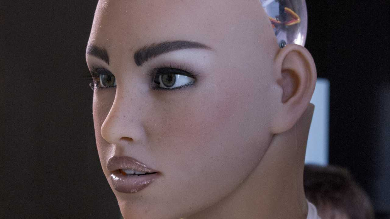 """Human-Robot Interaction: """"Robo-Rassismus"""" und Sex mit Maschinen"""