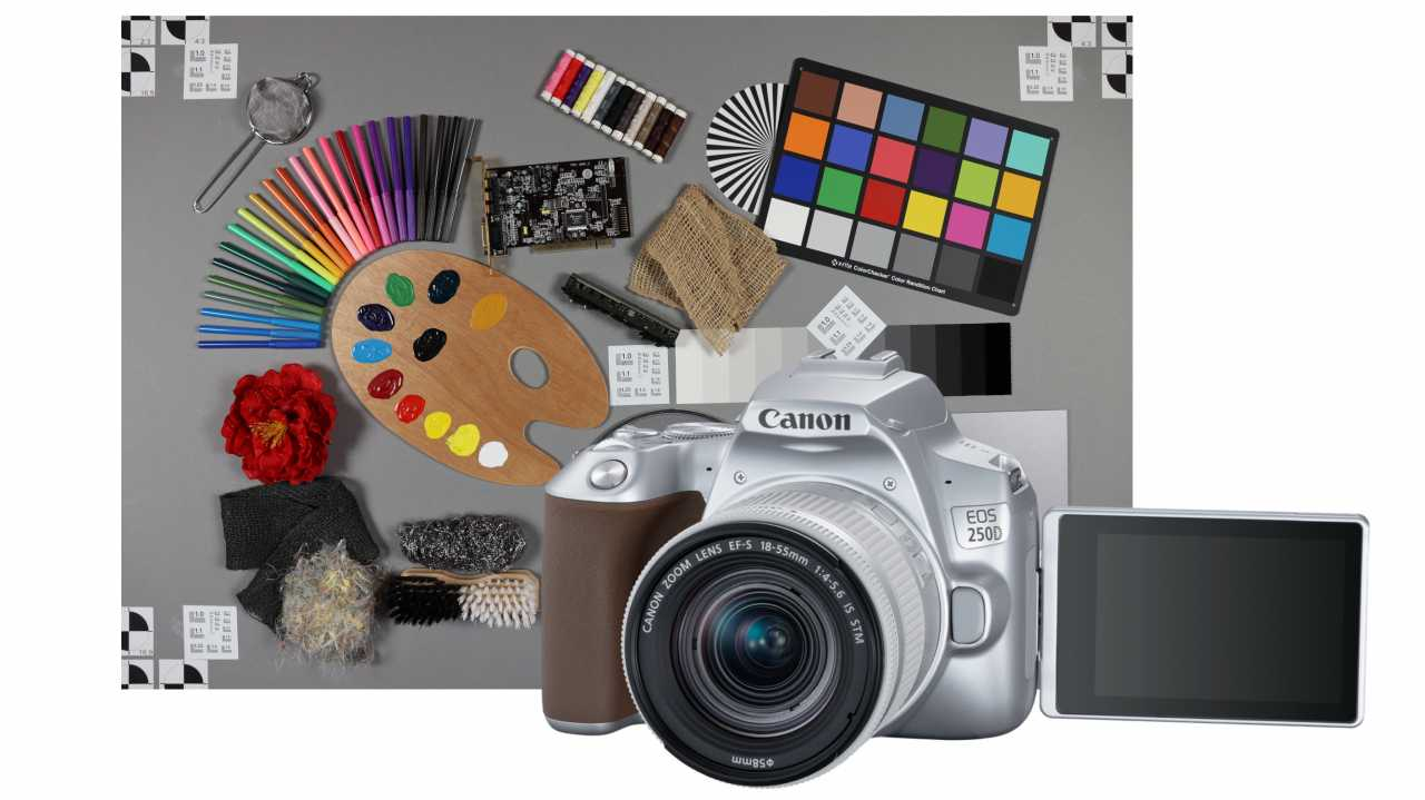 Canon EOS 250D: Wer braucht diese Einsteiger-Spiegelreflexkamera?
