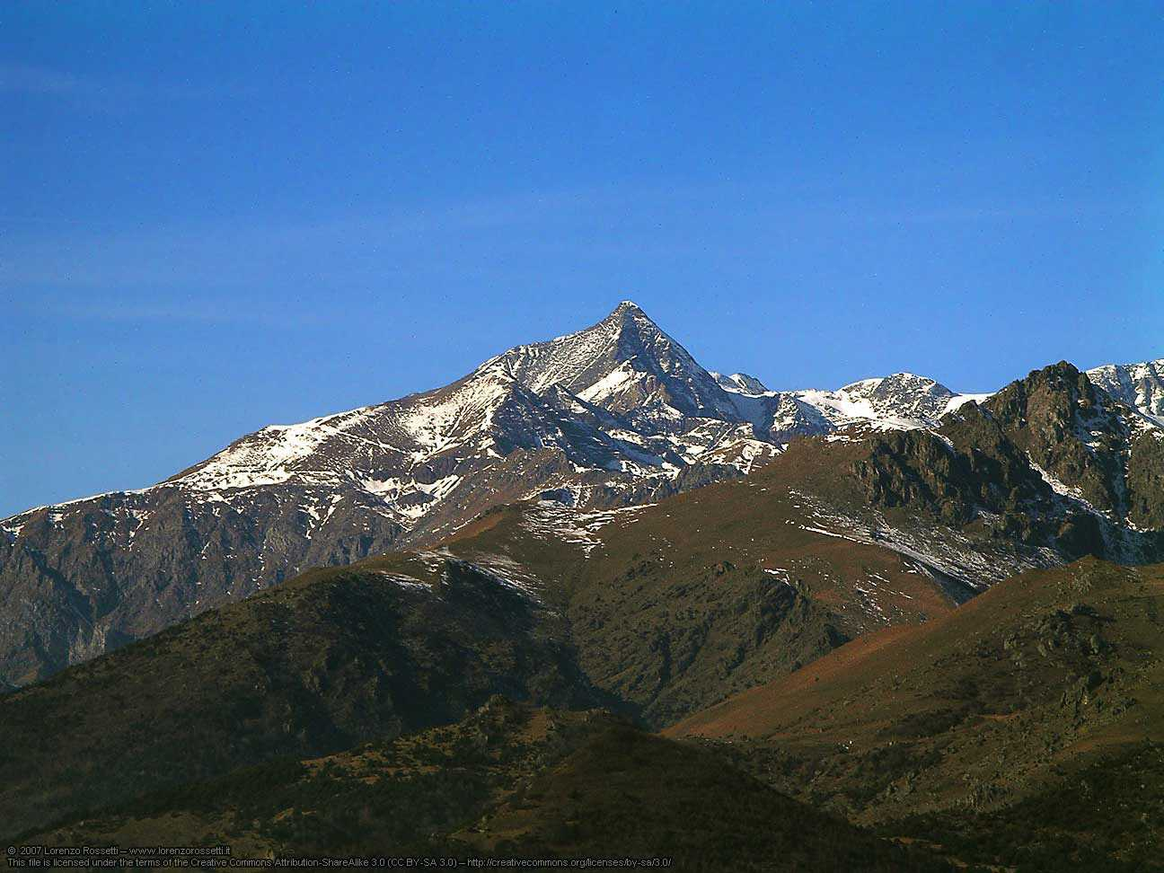 Heute findet man Alpenrispengras auch auf dem 3500 Meter hohen Rocciamelone in den Alpen.
