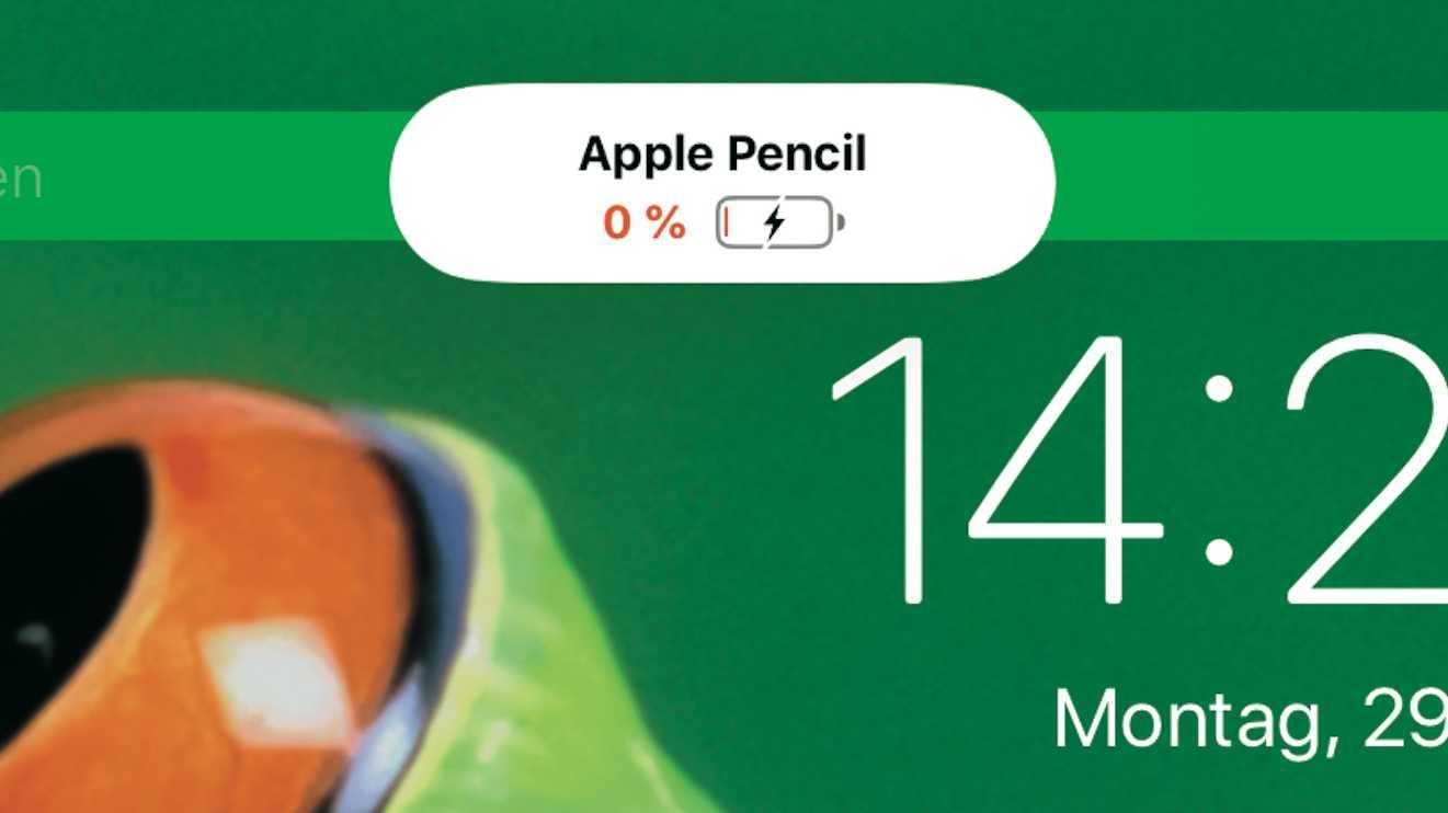 Apple Pencil leer