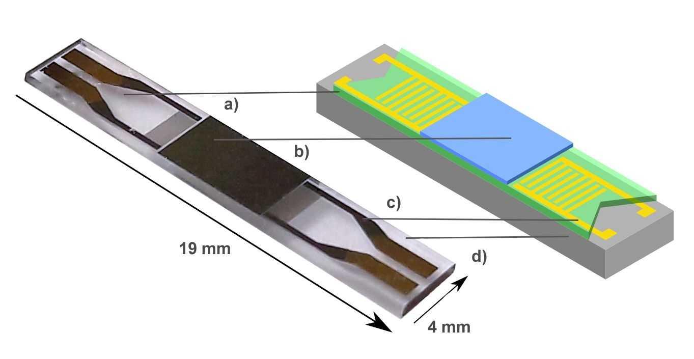 Der schematische Aufbau des Sensors: Ein Dünnfilm aus magnetischem Material, der auf Magnetfelder mit einer Änderung seiner elastischen Eigenschaften reagiert, auf einem piezolektrischen Substrat.