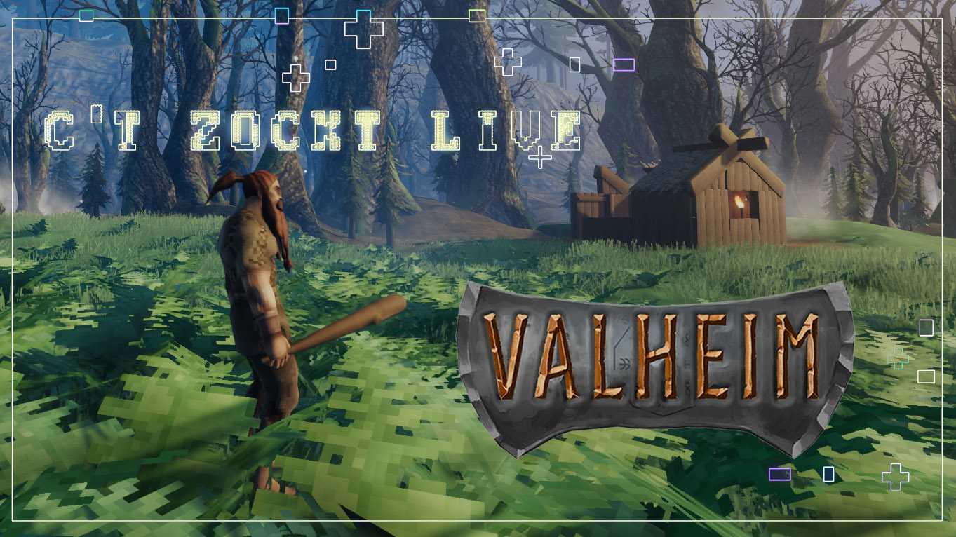 c't zockt live Valheim