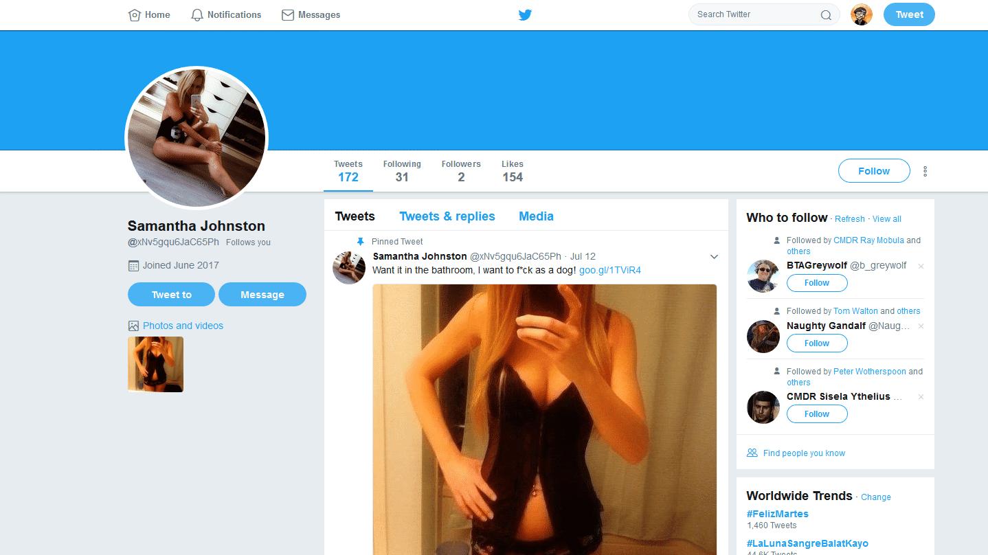 Forscher legen zehntausende Porno-Spambots auf Twitter trocken