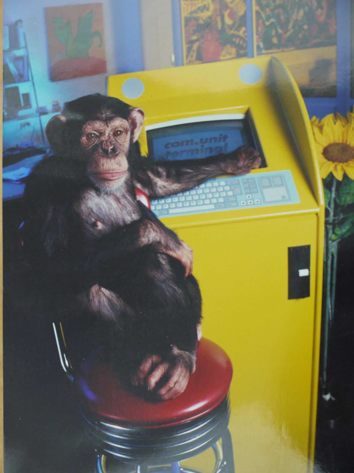 ...[ ]doch es kamen Affen