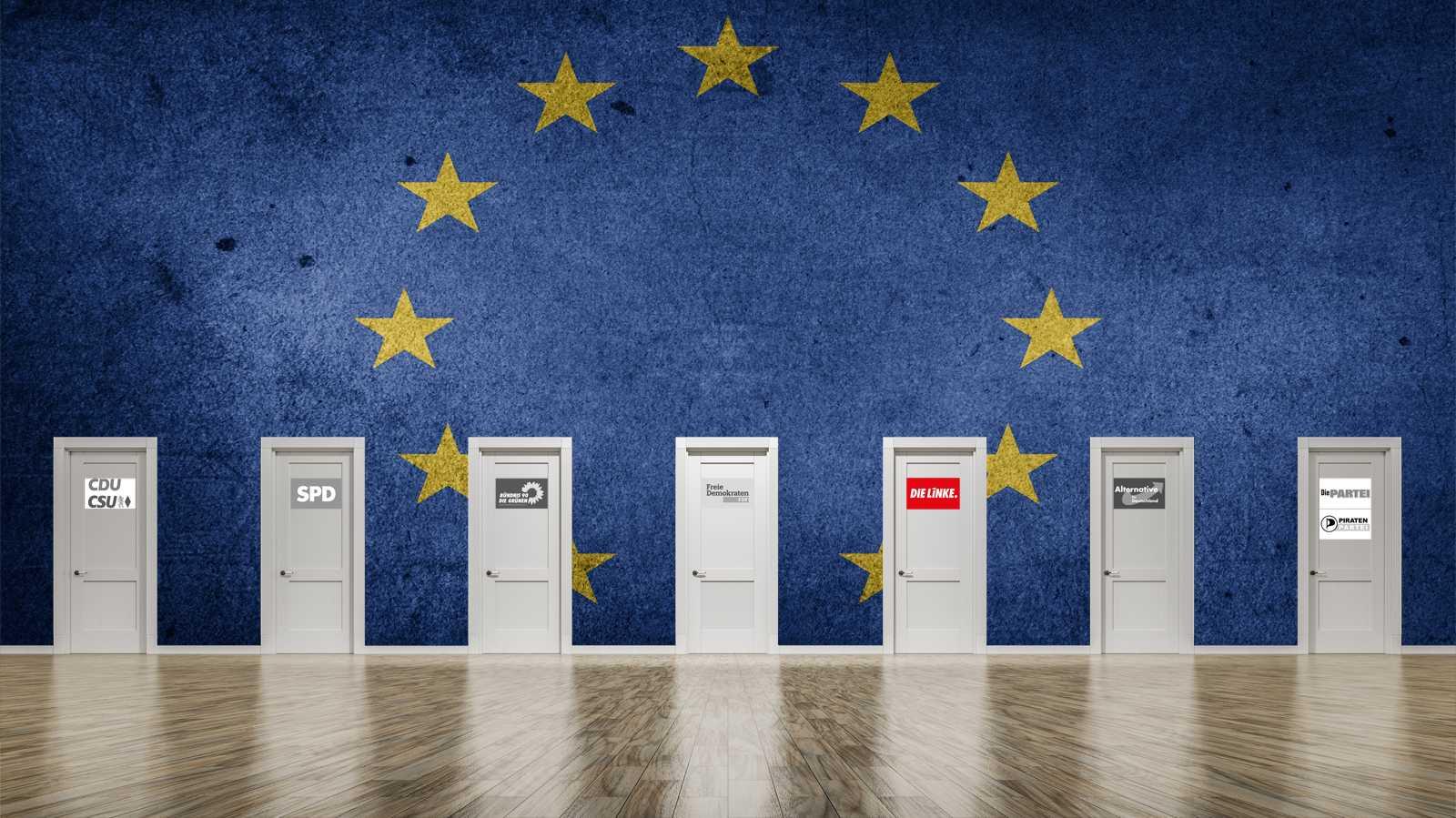Programme und Positionen zur Europawahl 2019: Die Linke