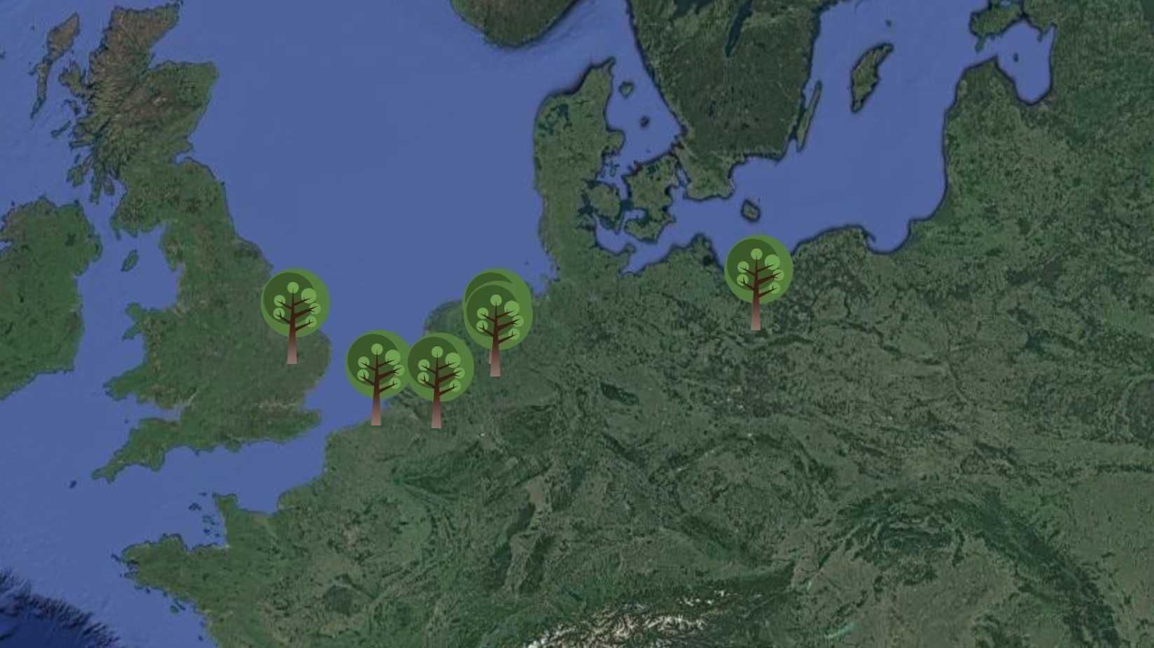 Digitaler Wald: Eberswalder Institut zeigt neue Technik-Trends