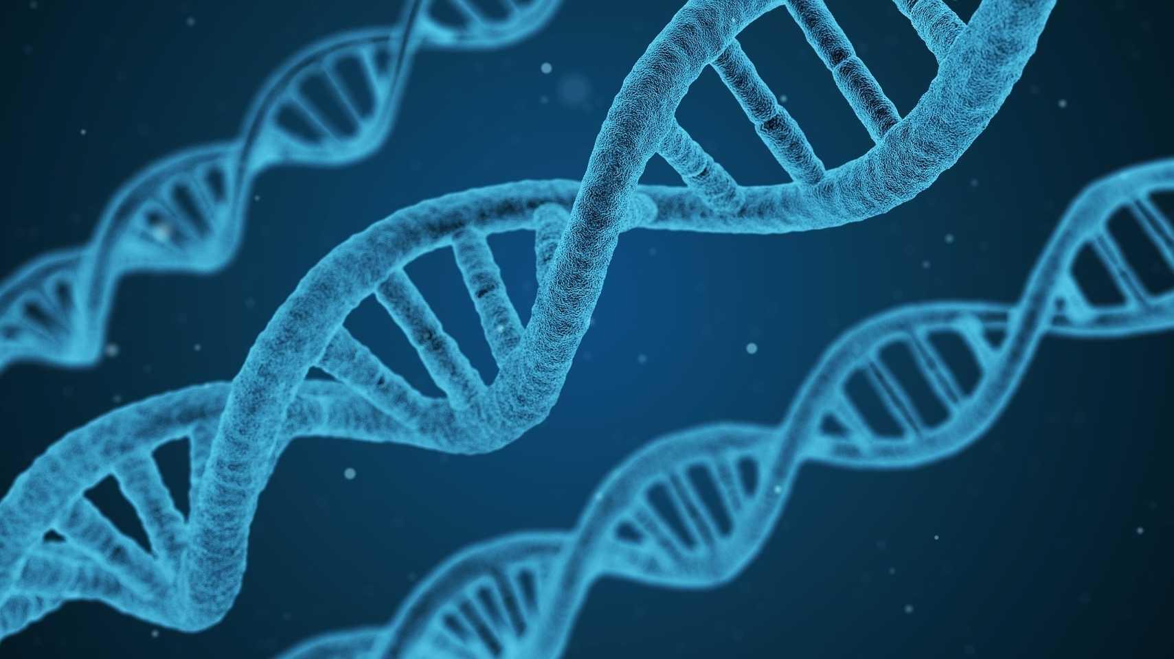 Neuer Sequenzierungsanbieter will Kunden mit Gen-Daten handeln lassen