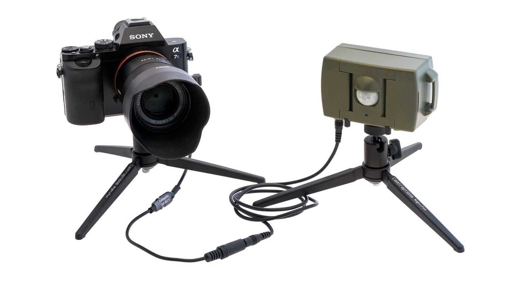 Kamerauslöser: PIR-Bewegungsmelder von Camtraptions